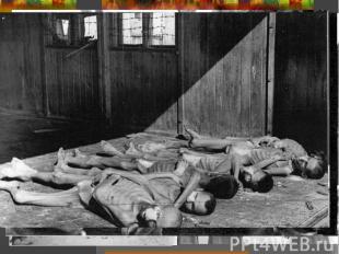 К лету 1941 г. «европейскую войну» можно было считать завершенной - Германия под