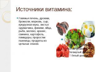 Источники витамина: Говяжья печень, дрожжи, брокколи, морковь, сыр, кукурузная м