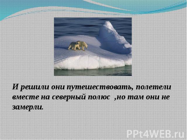 И решили они путешествовать, полетели вместе на северный полюс ,но там они не замерли.