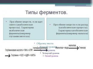 Типы ферментов. При обмене веществ, если идет синтез (анаболические процессы). Х