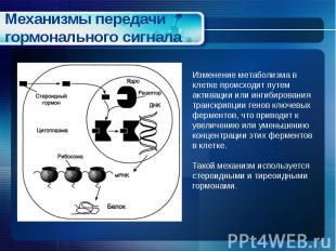Механизмы передачи гормонального сигнала