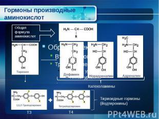 Гормоны производные аминокислот
