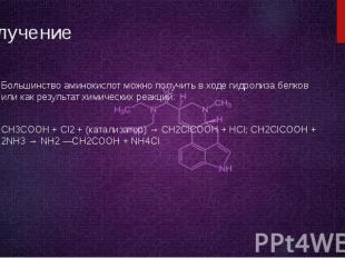 Получение Большинство аминокислот можно получить в ходе гидролиза белков или как