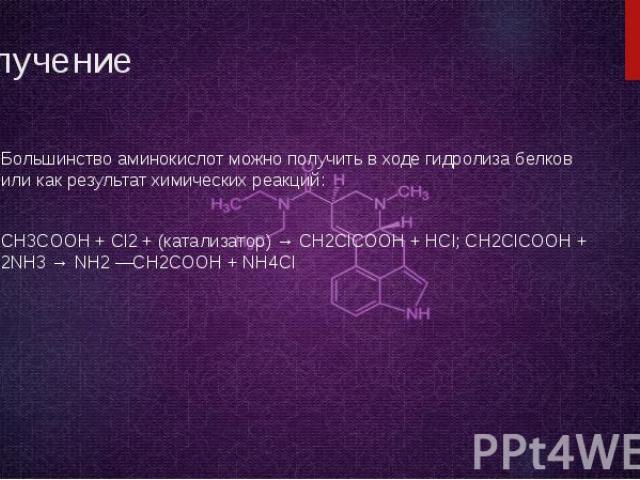 Получение Большинство аминокислот можно получить в ходе гидролиза белков или как результат химических реакций: CH3COOH + Cl2 + (катализатор) → CH2ClCOOH + HCl; CH2ClCOOH + 2NH3 → NH2 —CH2COOH + NH4Cl