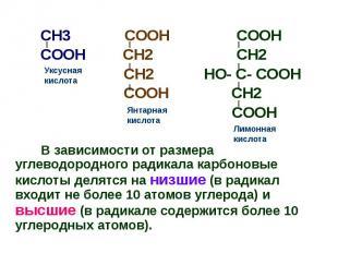 CH3 COOH COOH CH3 COOH COOH COOH CH2 CH2 CH2 HO- C- COOH COOH CH2 COOH В зависим