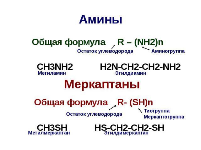 Амины Общая формула R – (NH2)n CH3NH2 H2N-CH2-CH2-NH2 Меркаптаны Общая формула R- (SH)n CH3SH HS-CH2-CH2-SH
