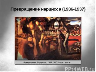 Превращение нарцисса (1936-1937)