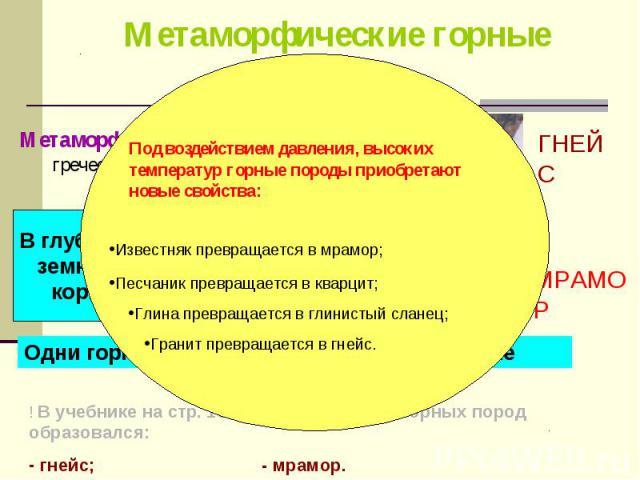 Метаморфоз -превращение (с греческого) Метаморфоз -превращение (с греческого)