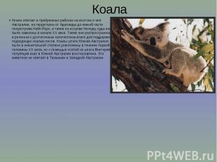 Коала Коала обитает в прибрежных районах на востоке и юге Австралии, на территор