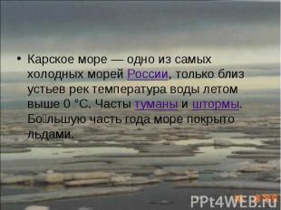 Карское море— одно из самых холодных морей России, только близ устьев рек
