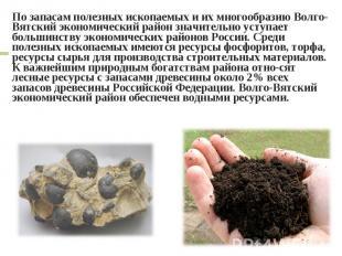 По запасам полезных ископаемых и их многообразию Волго-Вятский экономический рай