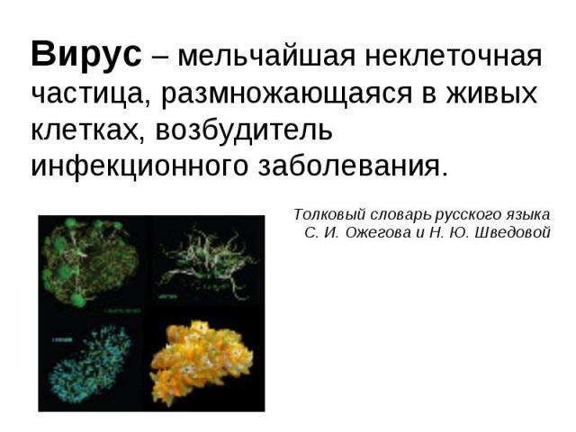 Вирус – мельчайшая неклеточная частица, размножающаяся в живых клетках, возбудитель инфекционного заболевания. Вирус – мельчайшая неклеточная частица, размножающаяся в живых клетках, возбудитель инфекционного заболевания.