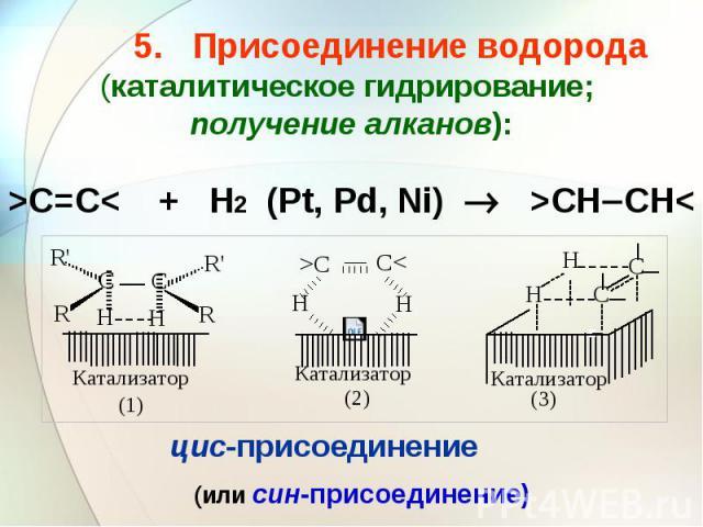 5. Присоединение водорода (каталитическое гидрирование; получение алканов): >C=C< + H2 (Pt, Pd, Ni) >CH CH<