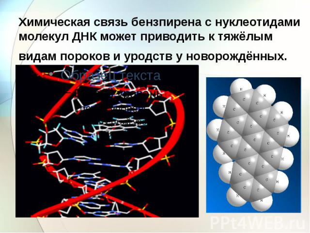 Химическая связь бензпирена с нуклеотидами молекул ДНК может приводить к тяжёлым видам пороков и уродств у новорождённых.