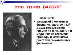 ОТТО ГЕНРИХ ВАРБУРГ (1883–1970), немецкий биохимик и физиолог, удостоенный в 193