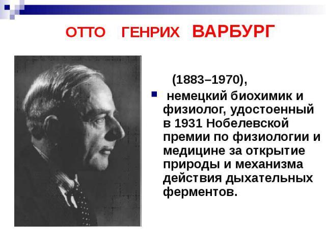 ОТТО ГЕНРИХ ВАРБУРГ (1883–1970), немецкий биохимик и физиолог, удостоенный в 1931 Нобелевской премии по физиологии и медицине за открытие природы и механизма действия дыхательных ферментов.