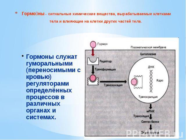 Гормо ны - сигнальные химические вещества, вырабатываемые клетками тела и влияющие на клетки других частей тела.