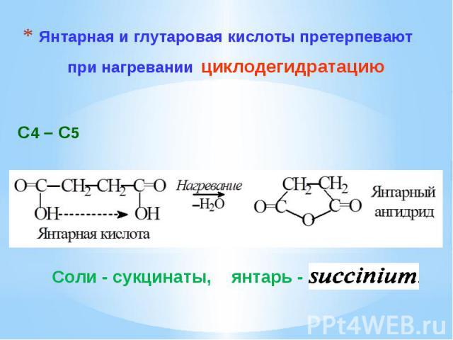 Янтарная и глутаровая кислоты претерпевают при нагревании циклодегидратацию
