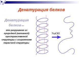 Денатурация белков