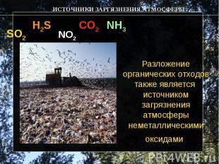 Разложение органических отходов также является источником загрязнения атмосферы
