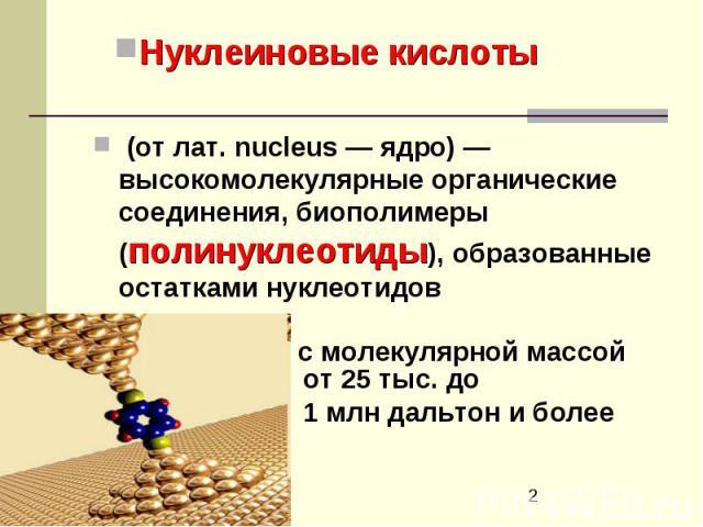 (от лат.nucleus— ядро)— высокомолекулярные органические соединения, биополимеры (полинуклеотиды), образованные остатками нуклеотидов (от лат.nucleus— ядро)— высокомолекулярные органические соединения, биополимеры …