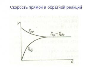 Скорость прямой и обратной реакций