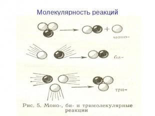 Молекулярность реакций