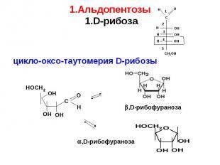цикло-оксо-таутомерия D-рибозы цикло-оксо-таутомерия D-рибозы ,D-рибофураноза ,D