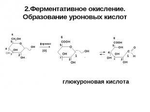 глюкуроновая кислота