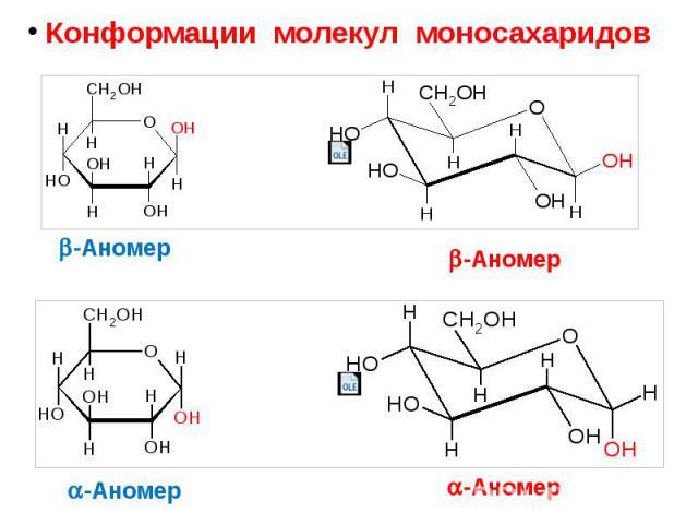 Конформации молекул моносахаридов Конформации молекул моносахаридов