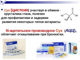 Cys (цистеин) участвуя в обмене веществ хрусталика глаза, полезен Cys (цистеин)