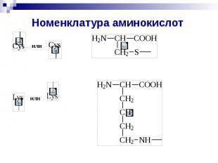 Номенклатура аминокислот