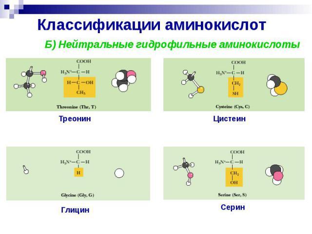 Классификации аминокислот