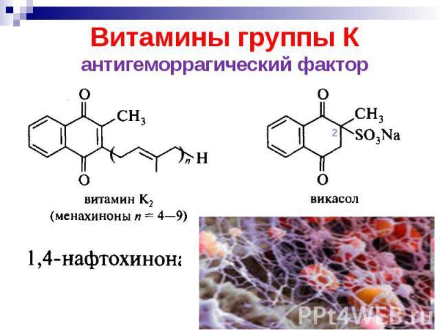 Витамины группы К антигеморрагический фактор