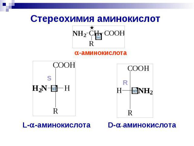 Стереохимия аминокислот