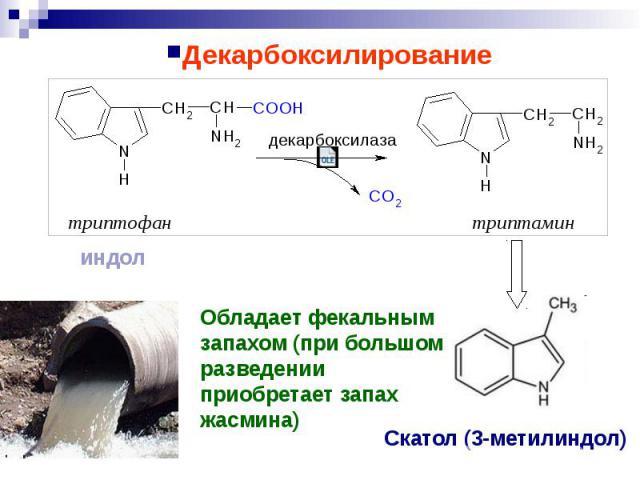 Декарбоксилирование Декарбоксилирование