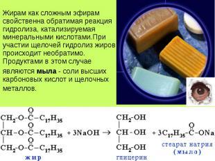 Жирам как сложным эфирам свойственна обратимая реакция гидролиза, катализируемая