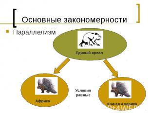 Основные закономерности Параллелизм
