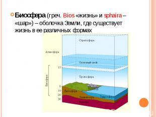 Биосфера (греч. Bios «жизнь» и sphaira – «шар») – оболочка Земли, где существует