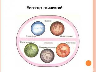 Биогеценотический