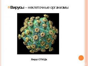 Вирусы – неклеточные организмы Вирусы – неклеточные организмы