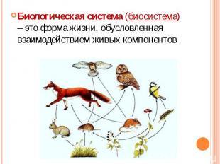 Биологическая система (биосистема) – это форма жизни, обусловленная взаимодейств