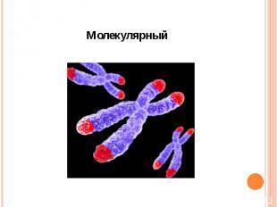 Молекулярный