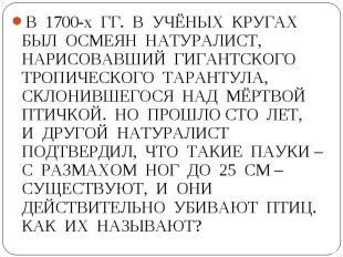 В 1700-х ГГ. В УЧЁНЫХ КРУГАХ БЫЛ ОСМЕЯН НАТУРАЛИСТ, НАРИСОВАВШИЙ ГИГАНТСКОГО ТРО
