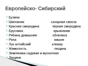 Европейско- Сибирский Бузина Шиповник сахарная свекла Красная смородина чёрная с