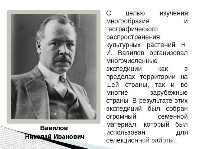 Вавилов Вавилов Николай Иванович