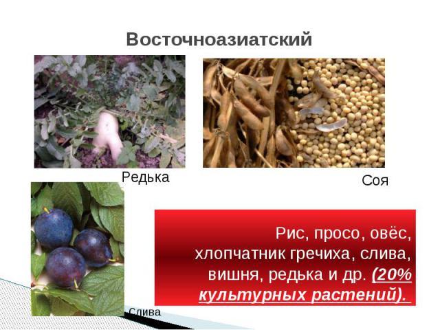 Восточноазиатский Рис, просо, овёс, хлопчатник гречиха, слива, вишня, редька и др. (20% культурных растений).