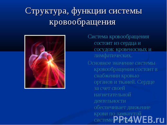 Система кровообращения состоит из сердца и сосудов: кровеносных и лимфатических. Система кровообращения состоит из сердца и сосудов: кровеносных и лимфатических. Основное значение системы кровообращения состоит в снабжении кровью органов и тканей. С…