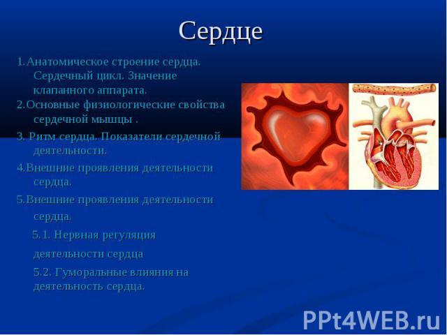 1.Анатомическое строение сердца. Сердечный цикл. Значение клапанного аппарата. 1.Анатомическое строение сердца. Сердечный цикл. Значение клапанного аппарата. 2.Основные физиологические свойства сердечной мышцы . 3. Ритм сердца. Показатели сердечной …