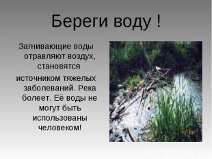 Береги воду ! Загнивающие воды отравляют воздух, становятся источником тяжелых з